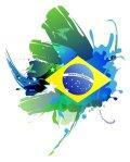 world cup 2010 brazil